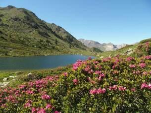 Lac de l'Oule à 2425 mètres