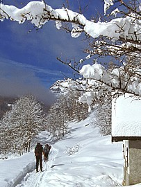 Ski de fond Chapelle Haute-Vallée