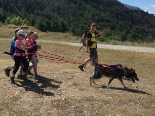 Cani-rando à Névache
